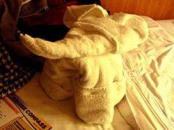 Blogelephant
