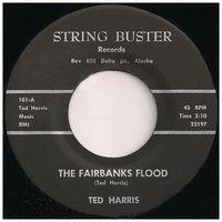 45rpm_fairbanks_flood