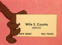 Wile-e-coyote-business-card
