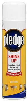 PledgeShineUP