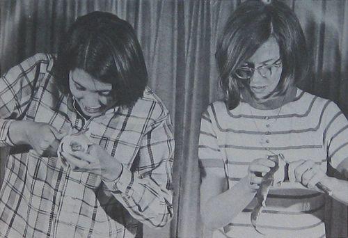 Apple Paring Contest