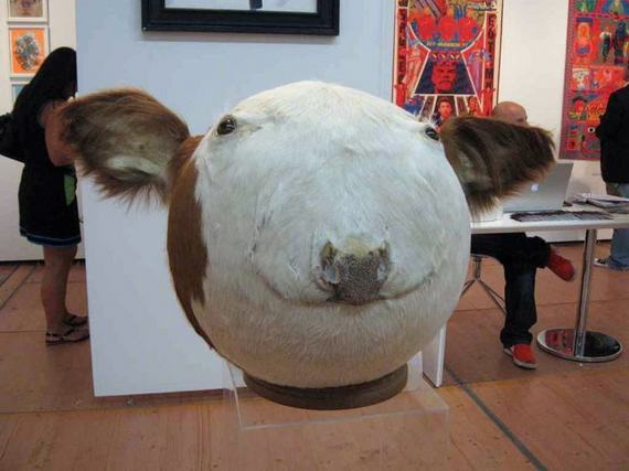 Weird-taxidermy-animal-photos36
