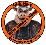 Logo_energyhog