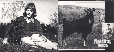 Kosmies_inside