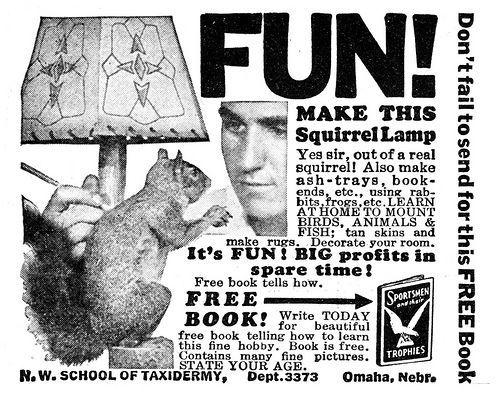 Squirrellamp