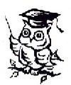 Wise_owl_4_2