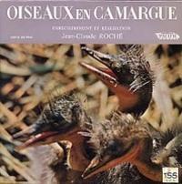 Oiseaux_en_camargue_2