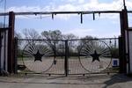 Longhorn_gate