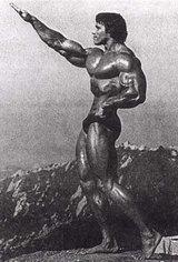 Arnold240