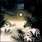 Coil_music_to_play_in_the_dark_1