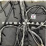 Fiddlehead_2