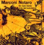 Notaro_marc_nosubrein_101s_2