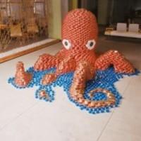 Octopus_1