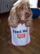 Rss_dog