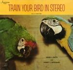 Trainyourbird