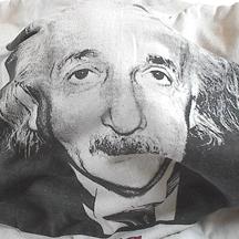 Einsteinshirt10