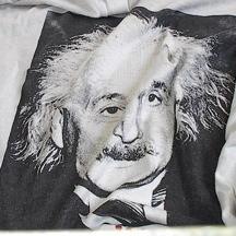 Einsteinshirt13